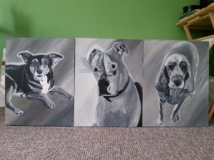 3 dogs 31st July