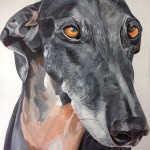 "LUCAS - one of two Galgo (Spanish Greyhound) commissions, done on an 18x14"" stretched canvas and taking roughly 7hrs overall (MAR 2018) *SOLD"
