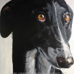 "VALIENTE - the second of two Galgo (Spanish Greyhound) commissions, done on an 18x14"" stretched canvas and taking roughly 7hrs overall (MAR '18) SOLD"