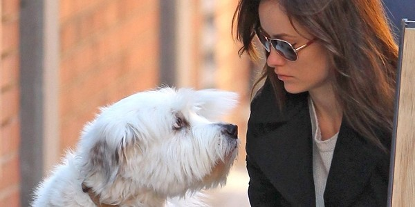 November 17, 2012: Olivia Wilde walks her dog Paco, in New York City.  While out Wilde stopped to get herself a cup of coffee at the Blue Bottle Coffee Co.  Before going in, Wilde made sure Paco wouldn't run off by securing his leash to the company's sidewalk sign. Mandatory Credit: JT/INFphoto.com  Ref: infusny-167|sp|